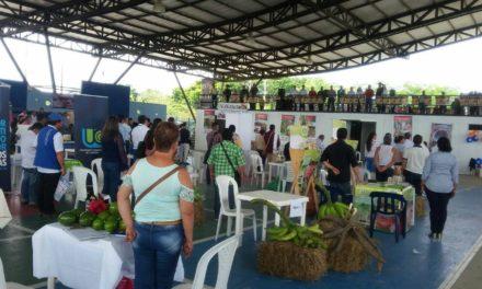 Nuevas oportunidades comerciales para productores campesinos de Meta