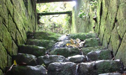 El proyecto para que El Dorado pase del mito al turismo