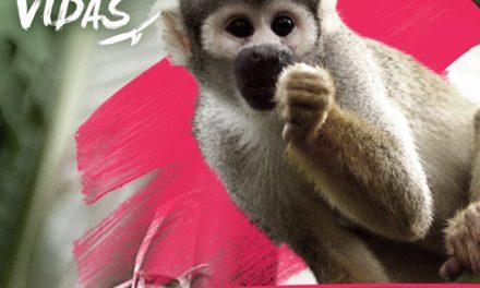 "La RAP-E dice ""NO"" a la tenencia ilegal de especies"