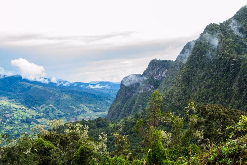 Región Central RAP-E comprometida con el cambio climático