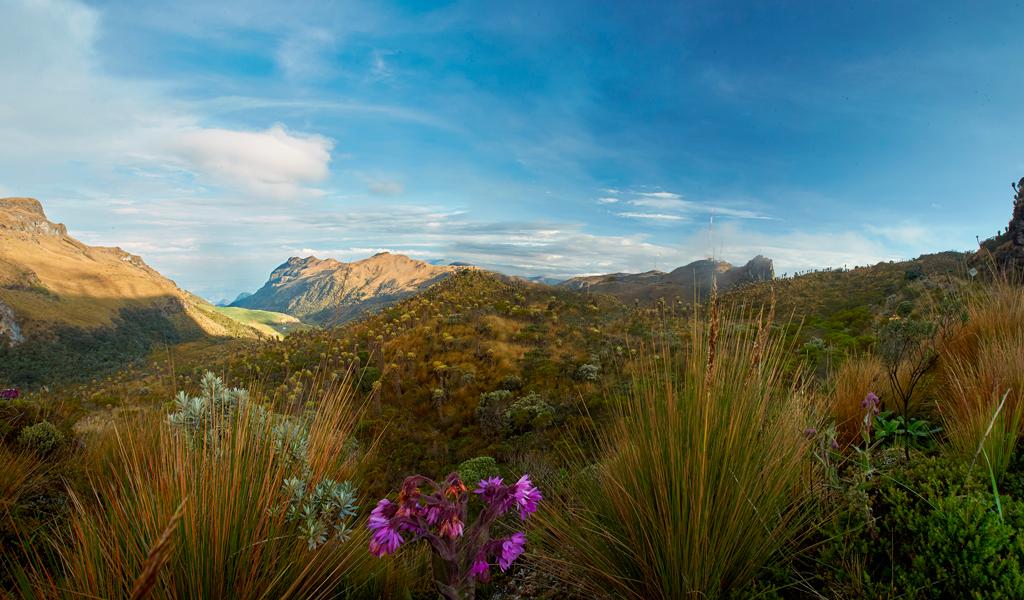 Los 18 parques nacionales del país celebran sus 40 años