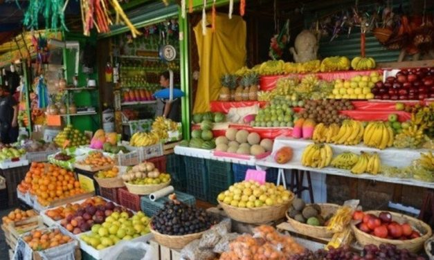 Agricultores podrán visibilizar sus productos en mercados internacionales