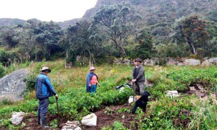 1.300 familias se benefician del Proyecto Páramos