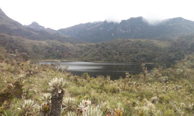La Región Central Comprometida con la protección de los páramos y el agua