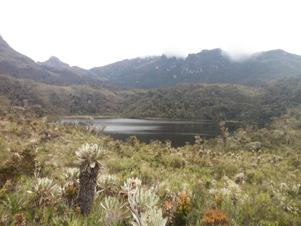 En el Meta La Región Central presentó avances del Proyecto Páramos.