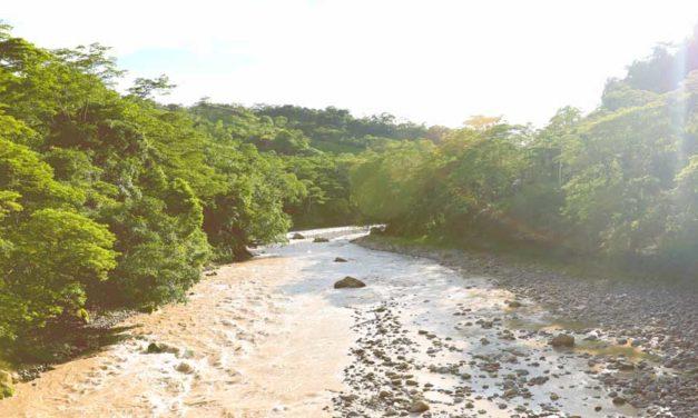 Cerca de $9.500 millones para recuperación y conservación ambiental en Cundinamarca