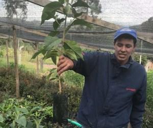 La RAPE busca viveros para restauración de los páramos en la Región Central