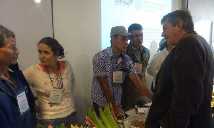 La Región Central incursiona con nuevos canales de comercialización para pequeños productores rurales.