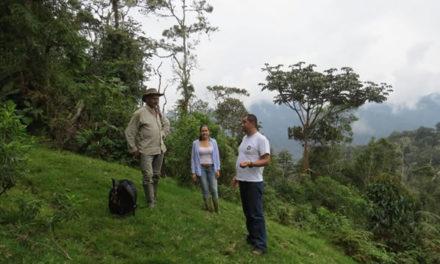 Proyecto para restaurar zonas de páramos en el Tolima