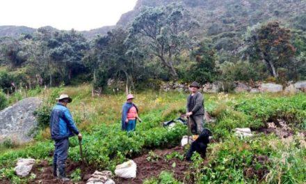 """Familias tolimenses se benefician del """"Proyecto Páramos"""""""