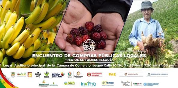 1er Encuentro de Compras Públicas Locales Regional Tolima