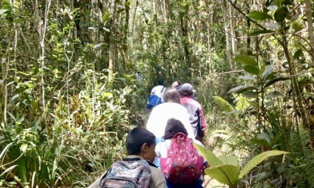 Con estrategias pedagógicas 'proyecto páramos' fomenta el respeto por la naturaleza
