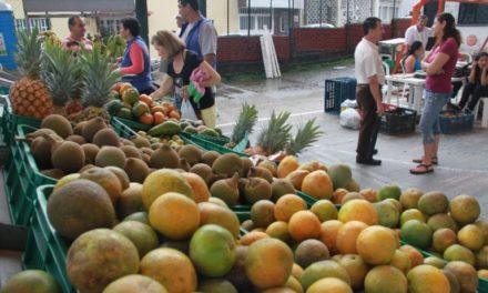 Gobierno Departamental y la Región Central RAPE ponen en marcha 'Cambio Verde' en el Meta