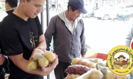 Cuarta jornada de cambio verde en Guachetá