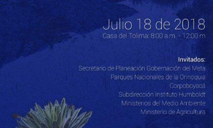 EN BOGOTÁ se realiza hoy mesa ambiental sobre páramos y transicionalidad