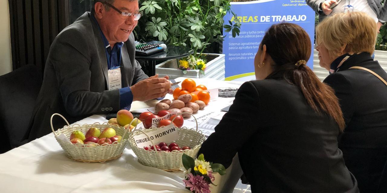 La Región Central se la juega por la comercialización de los productos del campo en Cundinamarca