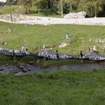 Presión ciudadana frente al fracking surtió efecto en Boyacá