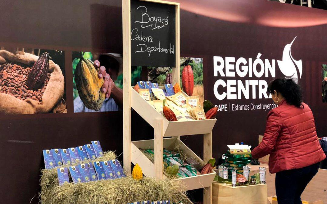 La Región Central se consolidó como una de las zonas con mayor expansión del mercado de cacao