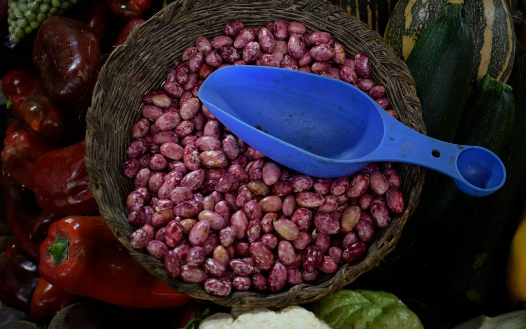 Campesinos del META firmarán acuerdo de Pago por Servicios Ambientales