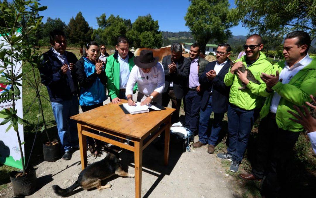 Boyacá ya tiene Política Pública de Protección y Bienestar Animal