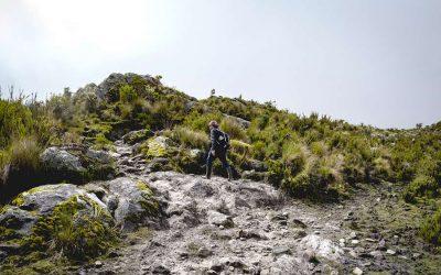 Llegan 105 GuardaPáramos del centro del país a proteger estos ecosistemas