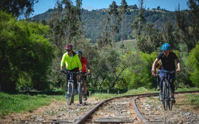 Panel de expertos: Vías verdes para el turismo en bicicleta