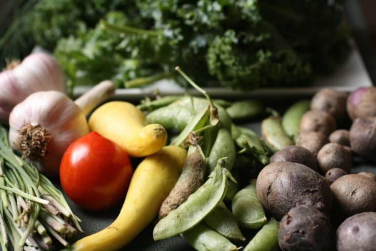 caracol.com.co – A cambio de material reciclable entregarán alimentos y canastos en Boyacá