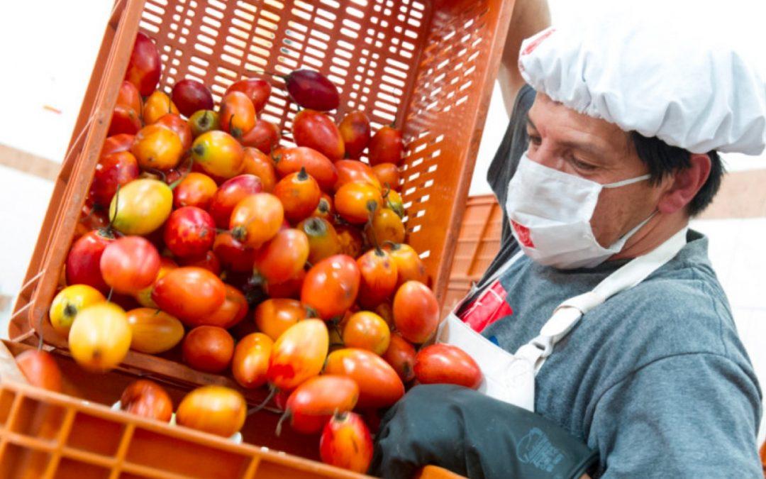 Plan de Abastecimiento Alimentario para la Región central se presentará en Congreso Internacional de Mercadeo & Logística