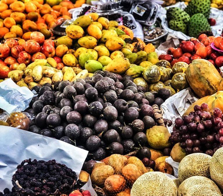 Inicia la construcción en los territorios del Plan de Abastecimiento Alimentario de la Región central del país.