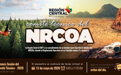 NODO DE CAMBIO CLIMÁTICO ESTABLECIÓ CRONOGRAMA DE CAPACITACIONES SOBRE MITIGACIÓN Y ADAPTACIÓN