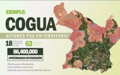 MODELO DE INCENTIVOS A LA CONSERVACIÓN AMBIENTAL EN LA REGIÓN CENTRAL: PILOTO NACIONAL