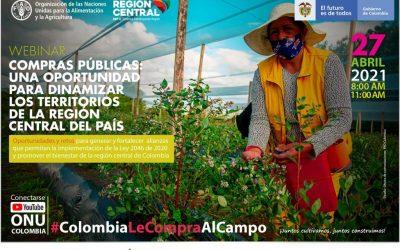 RAP-E Y FAO CONTINÚAN CICLO DE TALLERES PARA APROPIAR LEY DE COMPRAS PÚBLICAS EN COLOMBIA