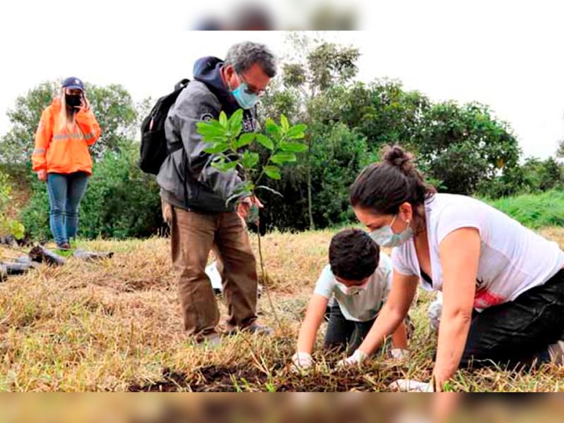 MÁS DE 130 ÁRBOLES SE PLANTARON EN EL HUMEDAL LA CONEJERA EN SUBA