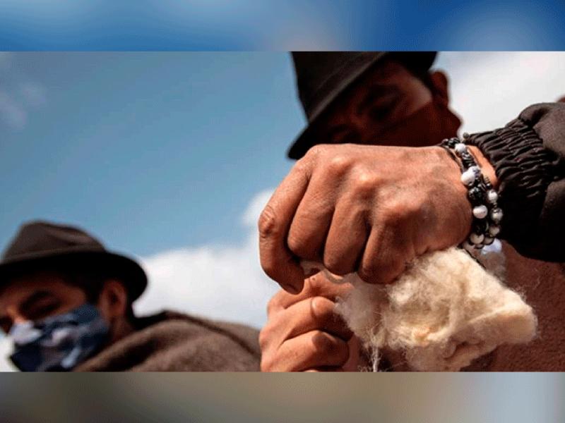 LLEGA A SUMAPAZ LA ESTRATEGIA 'LA SEMILLA: SOSTENIBILIDAD, ARTE Y MEMORIA RURAL'