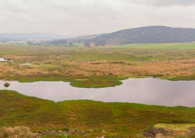 Laguna de la Herrera