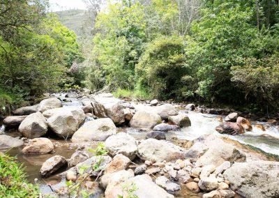 Río Palmar