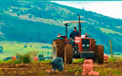 NUEVAS JORNADAS DE FORMACIÓN EN GESTIÓN LOGÍSTICA PARA EL SECTOR AGRO DE LA REGIÓN CENTRAL DE COLOMBIA